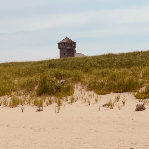 Provincetown dune