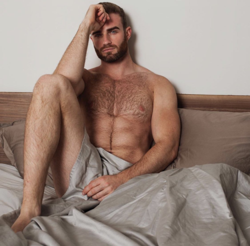 handsome, hairy man in bed